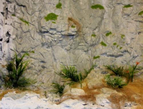 Diorama-musée avec l'illustration d'un mur d'habitat de rocailles Le mur du Ciucaru Mare